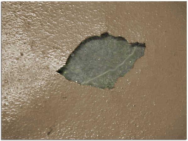 Отслаивание полимера вызванная слабой адгезией покрытия к бетону фото
